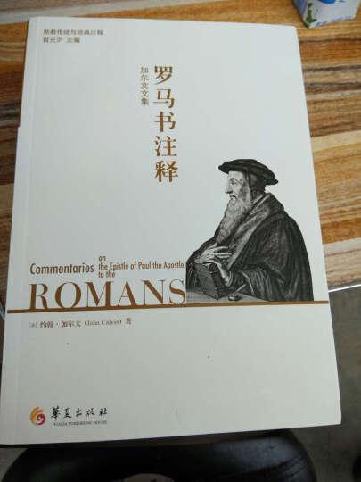 加尔文文集-罗马书注释 晒单图