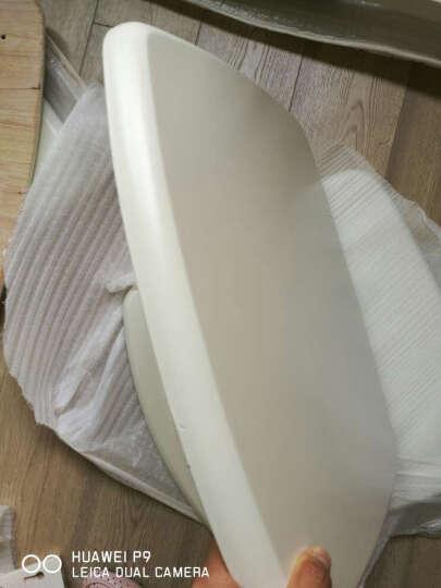 上林春天 实木餐椅现代简单木质中式凳子酒店饭店椅子家用休闲椅实木靠背椅 荧01款白色 晒单图