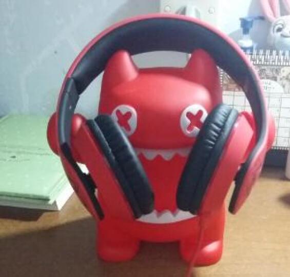 【动漫城】mr.leaf 魔鬼猫-音魔耳机头戴式 电脑游戏音乐耳麦重低音带话筒 黑色 晒单图