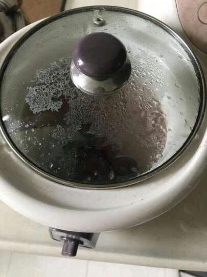 天际 BB煲宝宝辅食锅煮粥锅 婴儿煲汤陶瓷电炖锅 DDG-10N(1L约2-3碗) 晒单图