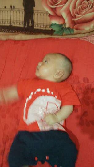 依尔婴2020春季新款婴儿连体衣男女宝宝衣服新生儿绅士连体哈衣爬服 LTY2031-粉色小本 0-3个月建议身高59CM 晒单图