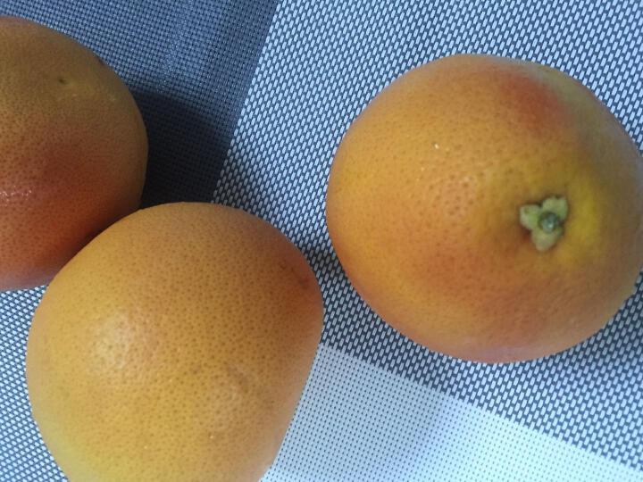 大派山  南非进口西柚 6个装 单果约350-450g 晒单图