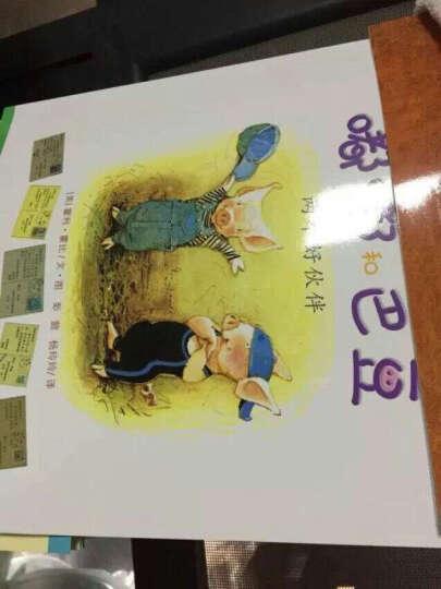任选 婴幼儿视觉彩色卡全4册 0-3岁宝宝辅食菜谱书 奇妙的科学注音版儿童绘本 恐龙书籍 0-3岁辅食添加与营养餐大全 晒单图