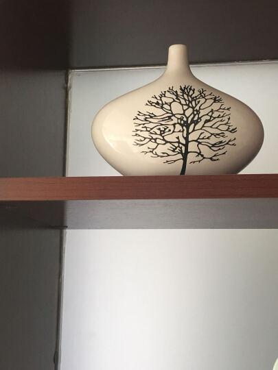 贝汉美(BHM) 创意超萌羊三口之家摆件工艺品 家居电视柜红酒柜酒柜博古架装饰品结婚礼物 蓝色 晒单图