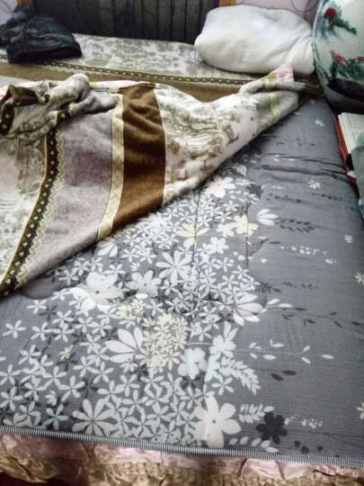 九洲鹿家纺 榻榻米可折叠学生加厚防滑印花床垫双人床褥垫子 爱的花海-1.5x2m 晒单图
