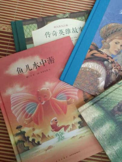 《传奇英雄故事》(了解世界经典传说,体验古典插图魅力) 7-9岁 晒单图