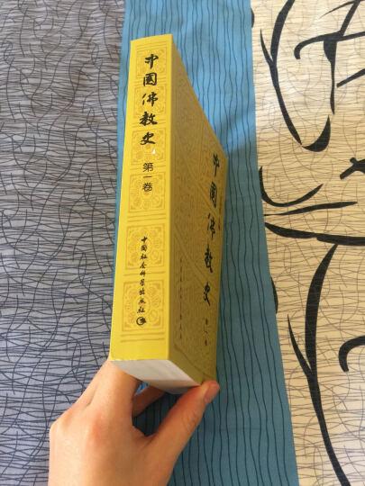 中国佛教史(第2卷) 晒单图