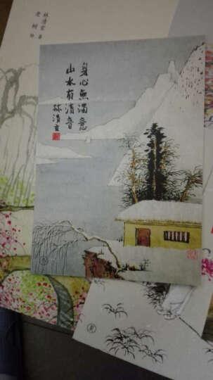 林清玄小语 (下册):心有沉香,不畏浮世 晒单图