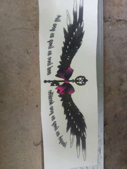 一口米 2018新款纹身贴彩色虎狗熊清新英文字母梦想翅膀纹身贴纸 LC721S 晒单图
