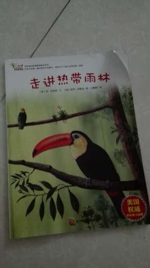 早早读动物博物馆绘本系列:走进热带雨林 晒单图