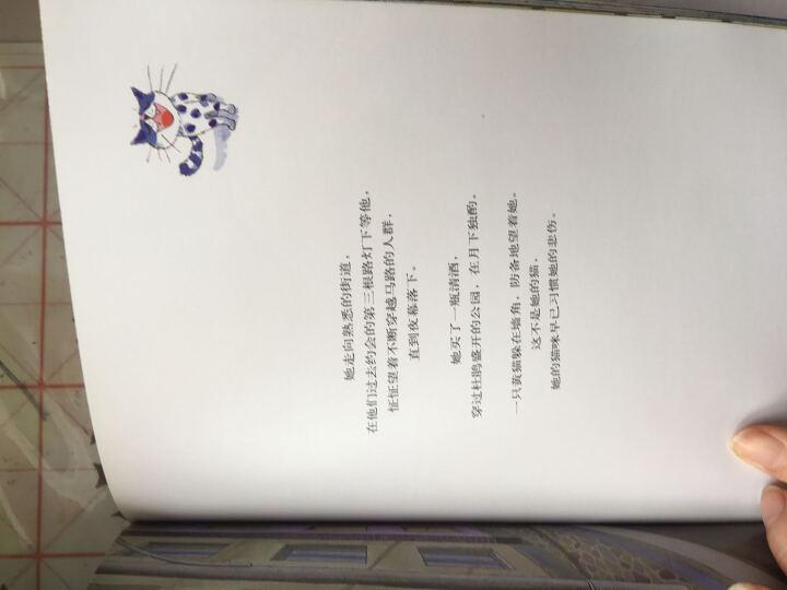 正版 几米经典作品:遗失了一只猫 (新版)几米漫画全集正版 漫画书籍 绘本 晒单图