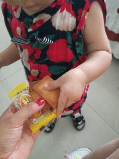 白鹤 鸡蛋煎饼干整箱9斤原味糕点早餐饼干休闲零食下午茶小吃铁板鸡蛋煎饼整箱批发 鸡蛋煎饼 晒单图