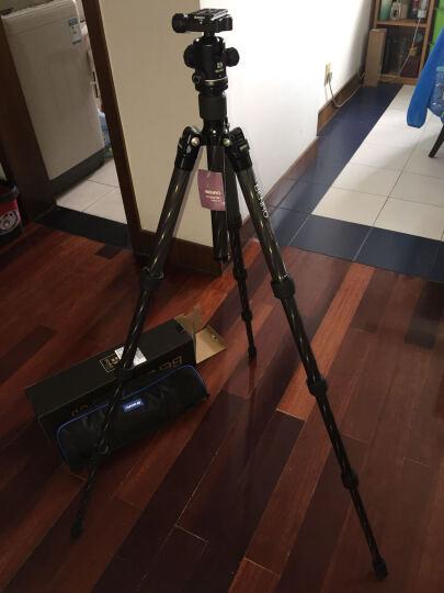 百诺(Benro)IS05 iSmart系列 IS05 便携三脚架 反折变自拍杆微单单反 晒单图