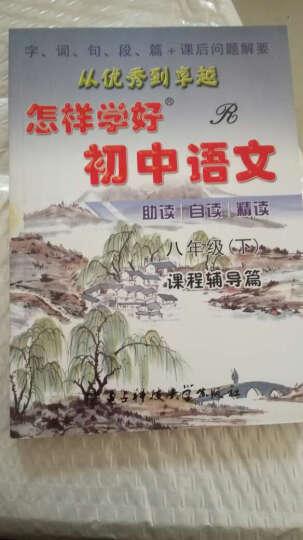 怎样学好初中语文 八年级 下册 人教版 课程辅导篇+课程测试篇 晒单图