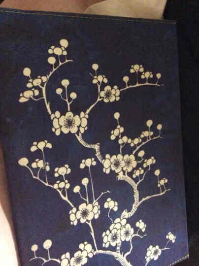 Daycraft德格夫花花世界系列笔记本女士礼品文具创意记事本日记本 蓝色 A5 晒单图