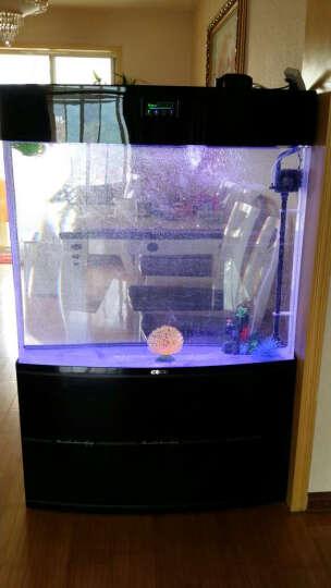 E家E缸 中型屏风鱼缸水族箱亚克力生态免换水鱼缸 客厅 黑色 100cm旗舰套餐(干湿分离上滤送368) 晒单图