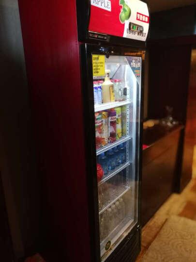 乐创(lecon) 啤酒展示柜冷藏立式冰柜商用冰箱饮料饮品保鲜单门双门三门冷柜水果鲜花点菜 红黑色单门 风冷 晒单图