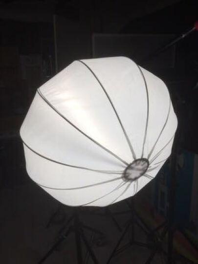 金贝EF-60 100 150 200LED专业摄影常亮灯太阳灯直播视频摄像补光灯人像儿童拍摄柔光灯 金贝65cm球形柔光罩 晒单图