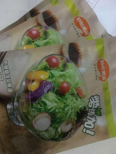 【夏日特卖】自然美滋 清爽酸甜拌菜调味料 沙拉酱低脂 沙拉汁 大拌菜汁蔬菜沙拉150g/袋 晒单图