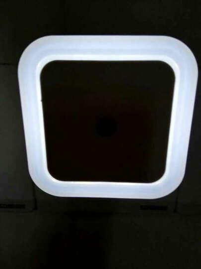 【天黑自动亮 天亮自动灭LED节能创意光感小夜灯卧室婴儿宝宝喂奶 小夜灯 晒单图