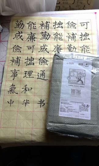 草字汇(精装)书画家毛笔书法字帖草书字典字贴名家作品实用查阅中国书法爱好者必 晒单图