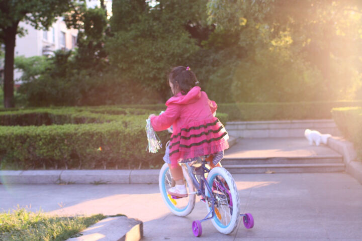 Bailey 迪士尼 儿童自行车12/14/16/18寸童车3-6岁男女孩小宝宝脚踏单车 花篮(18英寸)预售5月20日前发货完成 晒单图