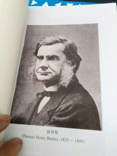 外国教育名著丛书:教育学讲授纲要 晒单图