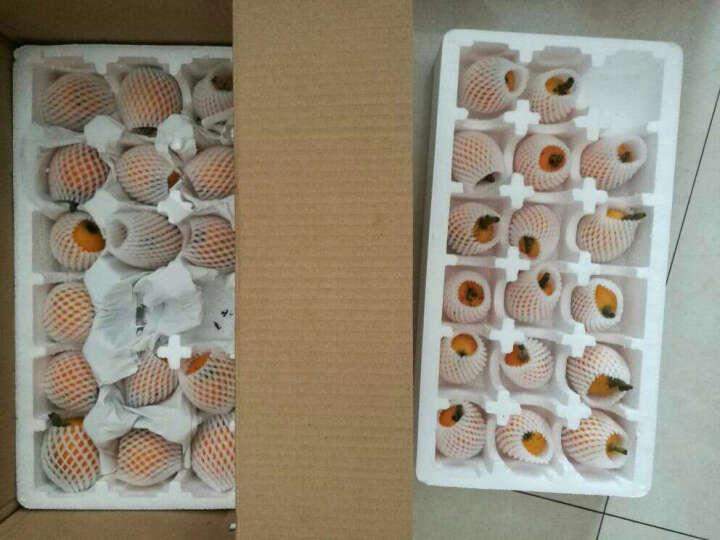 (顺丰速运)新鲜莲蓬 鲜莲子生吃野生现摘即食鲜莲子嫩甜农家莲蓬米 1.5kg 3斤装(普通快递) 晒单图