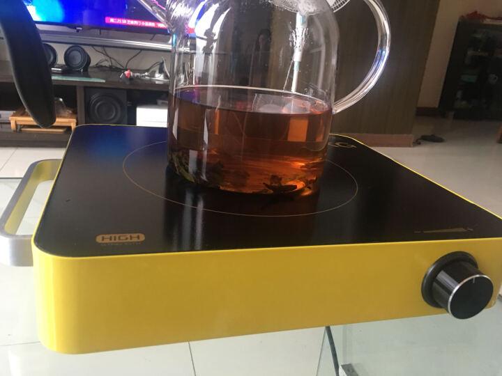SKG 1649S电陶炉煮茶炉电磁炉 特价家用智能电池炉光波炉爆炒火锅正品  两款颜色可选 黄色1649 晒单图