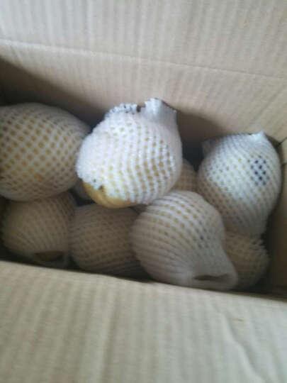 安鲜水果 河北皇冠梨 3kg装 单果约250g 水果 晒单图