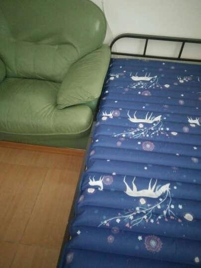 冰床垫夏季降温冰垫家用单双人按摩水床垫夏天清凉透气水垫水凉席冰枕 200*120宝蓝小鹿5米管 晒单图