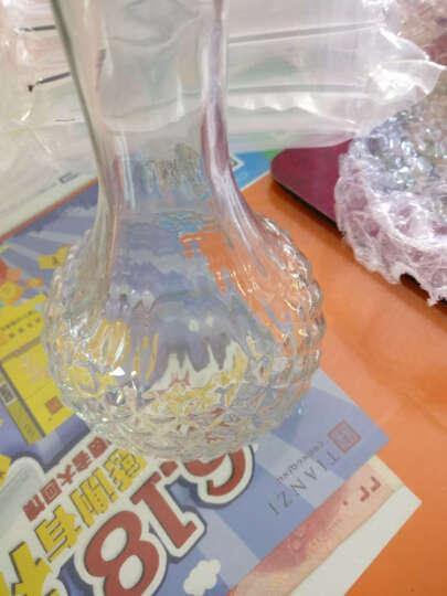 智利原瓶原装进口小瓶红酒 小猴梅洛干红葡萄酒 每支净含量187ml 6支装 晒单图