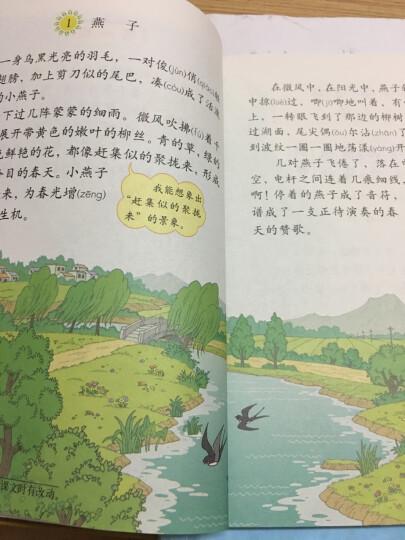 人教版3三年级下册语文书课本 小学三年级语文下册教材教科书 晒单图