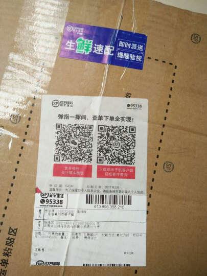 【吴川馆】高州荔枝 妃子笑白糖罂桂味 广东新鲜水果 桂味 2.5kg 晒单图