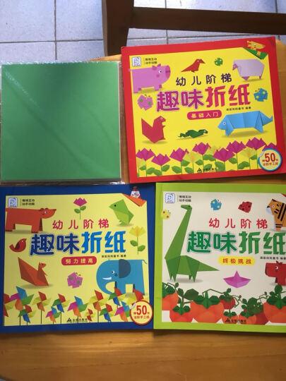 袋鼠妈妈 情境互动 幼儿阶段基础入门 趣味折纸全3册 不用剪刀的安全立体小手工制作书 3- 晒单图