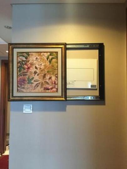巢里巢外电表箱装饰画配电箱装饰画欧式美式开关遮挡画可推拉餐厅挂画壁画 B 50*50(容纳40*40) 晒单图