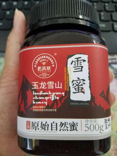 老滇凰(laodianhuang) 云南丽江玉龙雪蜜土蜂蜜农家自产野生500g 晒单图