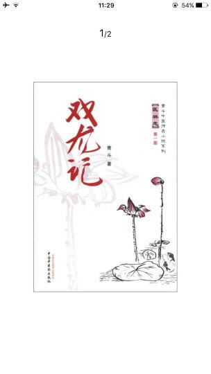 青斗中医传奇小说系列·医林志(第1部):双龙记 晒单图
