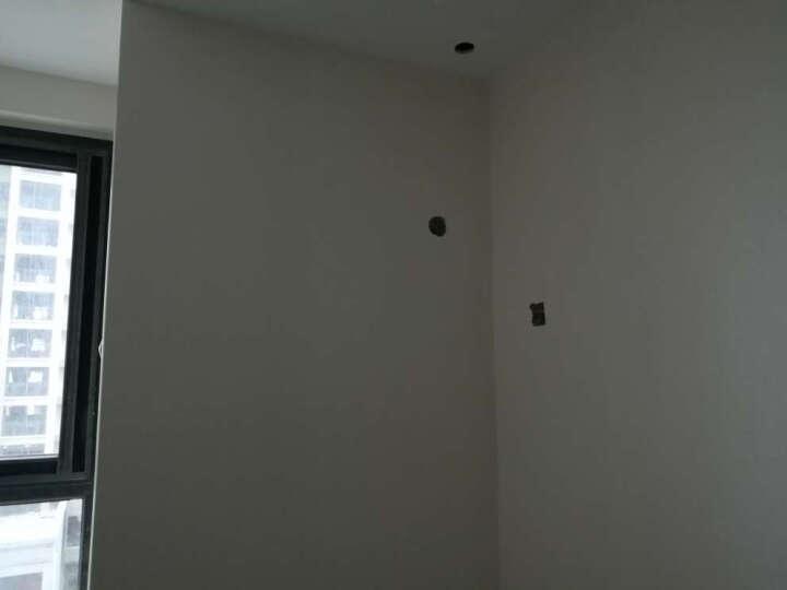 TOPLI 特普丽素色防水壁纸墙纸简约现代房间环保无纺布墙纸卧室餐厅电视背景墙壁纸+客厅 WX050027贝壳白 晒单图