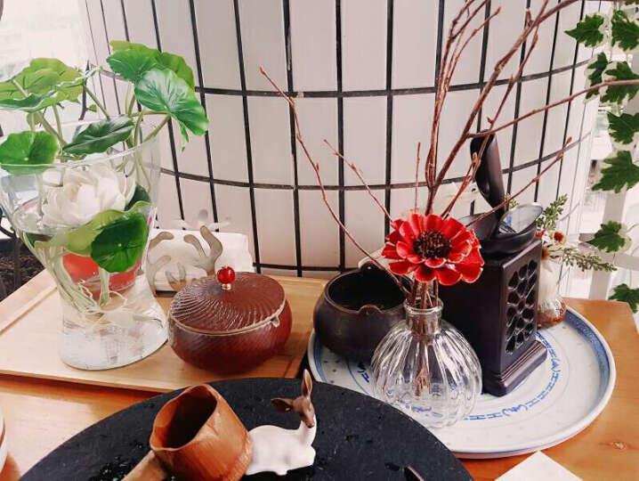 繁花故里 干花套装客厅装饰花瓶摆件天然干莲蓬满天星勿忘我薰衣草真花礼盒 兰妆 晒单图