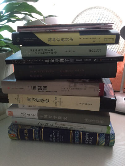 人类简史:从动物到上帝+天才在左 疯子在右+中国哲学简史+西方哲学史+丝绸之路:一部全新的世界史(套装共5册) 晒单图