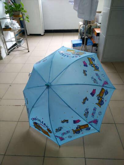 天堂伞儿童男 女雨伞弯钩半自动卡通可爱小学生雨伞适合5到12岁 2017款绿色拼白色卡通小熊 晒单图