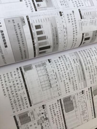 Excel 2013数据处理与分析 晒单图