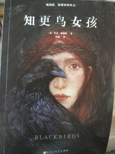 包邮 知更鸟女孩全套装1-3册媲美偷影子的人 黑色幽默悬疑爱情小说 悬爱之书  晒单图