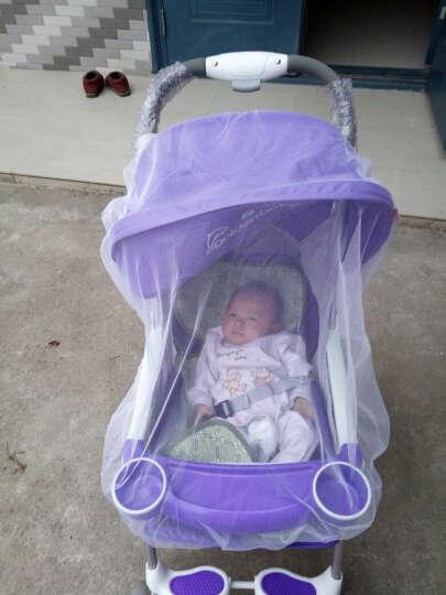 高景观婴儿推车轻便婴儿车可坐可趟宝宝推车新款儿童推车折叠便携多功能童车 A1四季款红色 晒单图