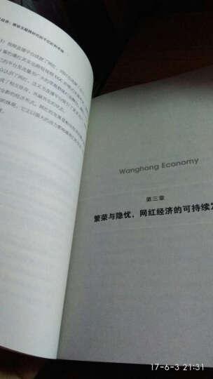 网红经济:移动互联网时代的千亿红利市场 晒单图