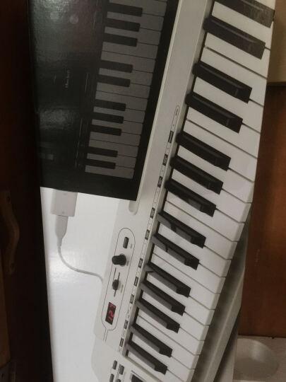 【总代理】samson山逊 midi键盘 carbon49键61键ipad编曲控制器 晒单图