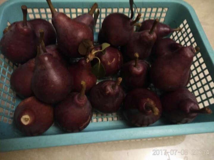 天序 秦岭红啤梨 2.5kg 新鲜水果 晒单图
