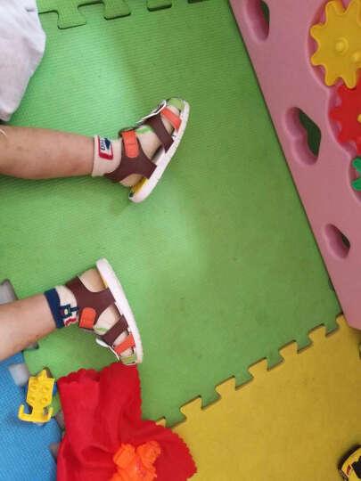 迪士尼夏新宝宝鞋子软底学步凉鞋1-3岁 男童女童鞋幼儿童小孩凉鞋 XZCS0911啡色 140mm/内长140mm 晒单图
