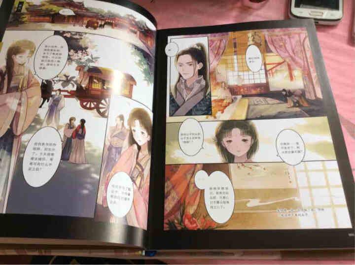 知音漫客丛书·绘心坊系列:甄嬛传·叙花列贰 晒单图